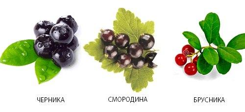 Сбор из листьев ягод при кисте поджелудочной железы