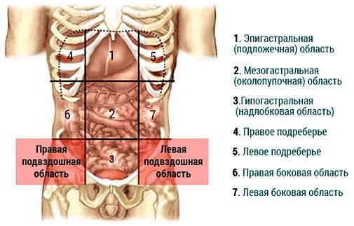 Симптомы когда болит живот thumbnail