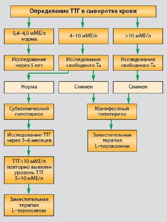 Диагностика гипотиреоза у взрослых