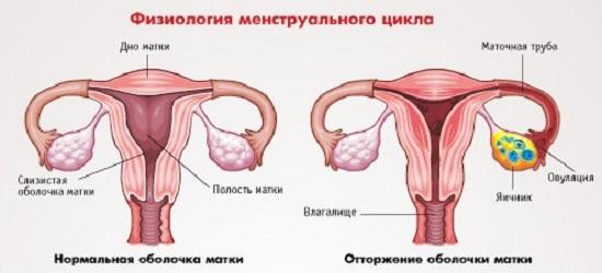 Лечить варикоз в тольятти доктор смирнов