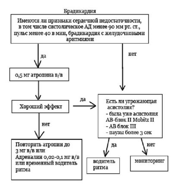 Брадикардия - причины, признаки, симптомы и лечение