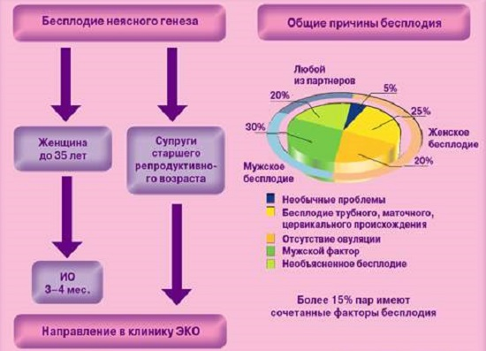Женское бесплодие: виды, причины, симптомы, лечение