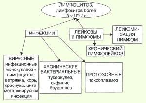 этих типов лимфоцитоз у детей причины применения термобелья шире