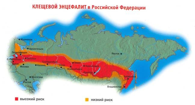 клещевого энцефалита в РФ