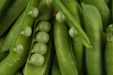 Сок зелёных бобов фасоли - наиболее эффективное народное средство