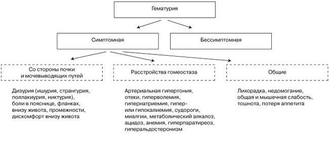 Классификация симптомов, сопутствующих гематурии