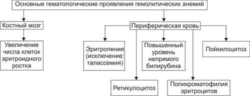 Основные гематологические проявления гемолитических анемий