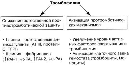 Патогенез тромбофилии