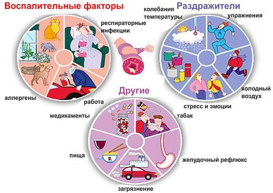 Астма - причины, симптомы, лечение и профилактика