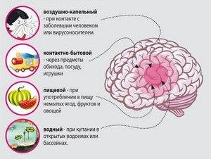 Менингит у детей: причины, признаки, симптомы, лечение