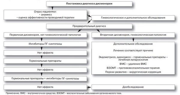 Схема лечения дисменореи