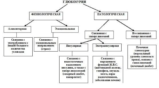 Виды и причины глюкозурии