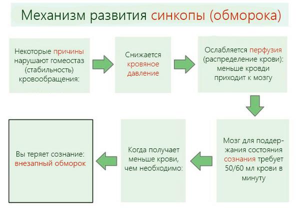 Механизм развития синкопе