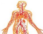 Венозная дисгемия