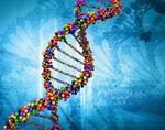 За наследственные заболевания отвечает не только геном