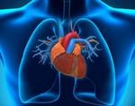 Ученые изобрели сенсор, предсказывающий возникновение сердечного приступа