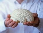 С возрастом мозг человека меняется