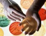 Австралийские врачи снизят устойчивость бактерий к антибиотикам