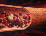 Ученые вывели искусственную кровь
