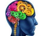 Исследователи рассказали, как можно повысить активность мозга