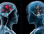 Ученые сделали сенсационное заявление, оказалось, что мозг женщин более активен и работоспособен, чем мужской