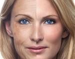 Ученым удалось победить клеточное старение