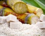 Сахарный тростник, как средство против стресса и для улучшения сна