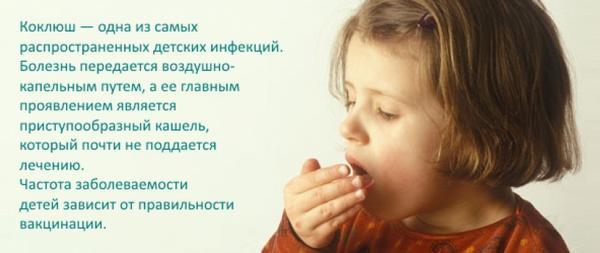 Коклюш – возможная причина свиста при вдохе у детей