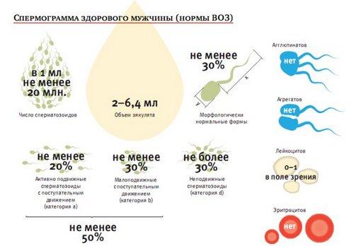 stoimost-sravneniya-obraztsov-spermi-kiev