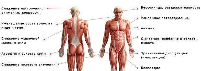Симптомы дефицита тестостерона у мужчин