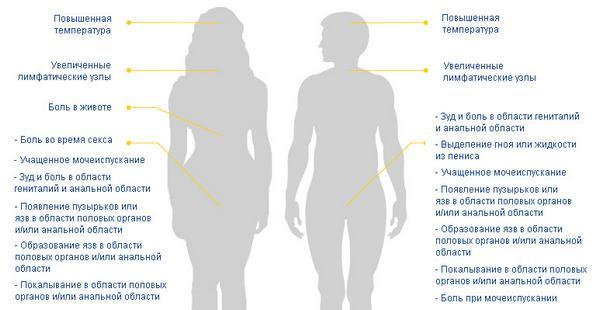 Симптомы венерических заболеваний